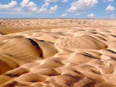 Desert Landscape-Craig Aurness-Photographic Print