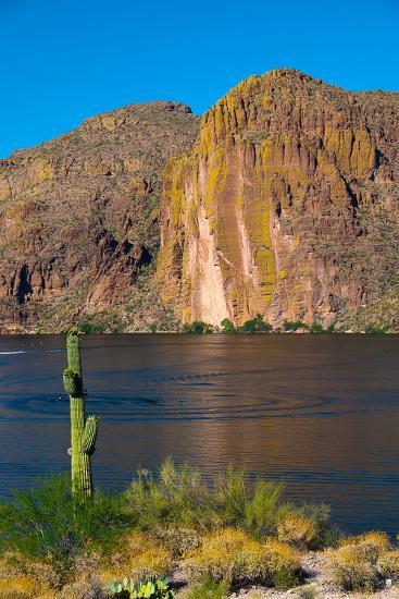 Desert mountain and Canyon lake, Superstition Mountains, Arizona, USA-Anna Miller-Photographic Print