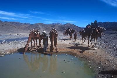 Desert Nomads, Bolan Pass, Pakistan--Photographic Print