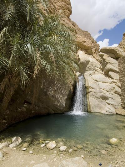 Desert Oasis, Chebika, Tunisia, North Africa, Africa-Ethel Davies-Photographic Print