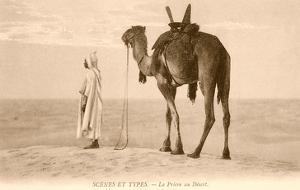 Desert Prayer, Bedouin and Camel