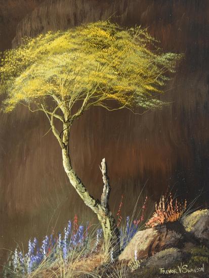 Desert Riot-Trevor V. Swanson-Giclee Print