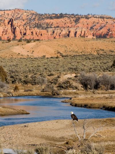 Desert Scene in Utah-Taylor S^ Kennedy-Photographic Print