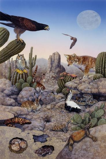 Desert Scene with Falcon and Cactus, a Fox and Other Desert Animals-Tim Knepp-Giclee Print