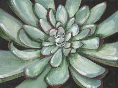 https://imgc.artprintimages.com/img/print/desert-succulent_u-l-pzj0ri0.jpg?p=0