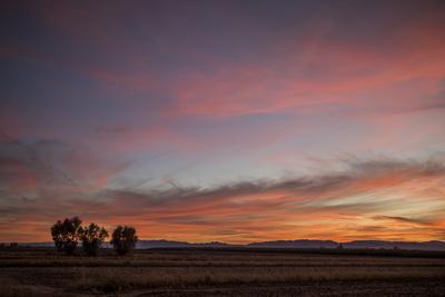 https://imgc.artprintimages.com/img/print/desert-sunset_u-l-q1fyf0h0.jpg?p=0