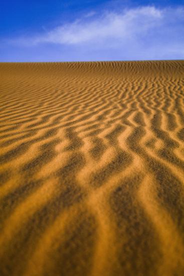 Desert-Design Pics Inc-Photographic Print