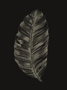 Black Leaf by Design Fabrikken