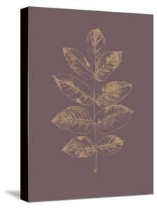 Botanica 2 by Design Fabrikken