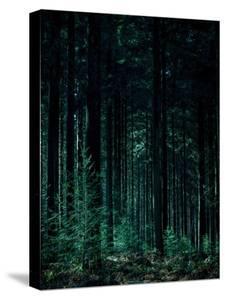 Deep Green by Design Fabrikken