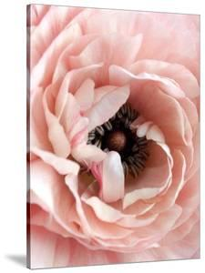 Flower by Design Fabrikken
