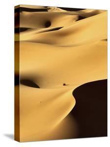 In the Dunes 1 by Design Fabrikken