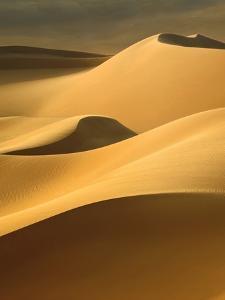In the Dunes 3 by Design Fabrikken