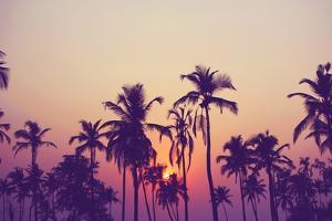 Palm Sky 1 by Design Fabrikken