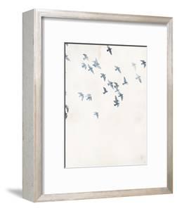 Pigeons Sky by Design Fabrikken