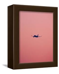 Pink Flight by Design Fabrikken