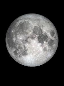 The Moon by Design Fabrikken