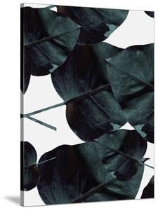 Tropic Sensation by Design Fabrikken