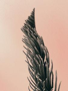 Upwards 1 by Design Fabrikken