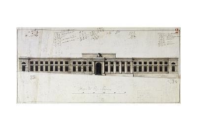 Design for Big Room of Plants--Giclee Print