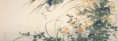 https://imgc.artprintimages.com/img/print/design-of-morning-glories-dianthus-and-other-flowers_u-l-f2vtva0.jpg?p=0