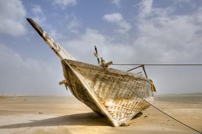 Abandoned Dhow on Beach; Ras Al Hadd, Oman by Design Pics Inc