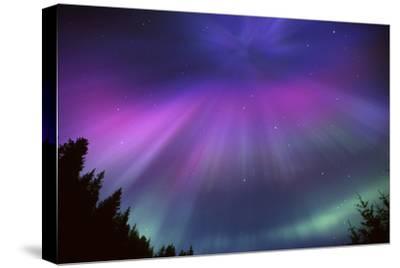 Aurora Corona over Crow Creek Sc Alaska Winter