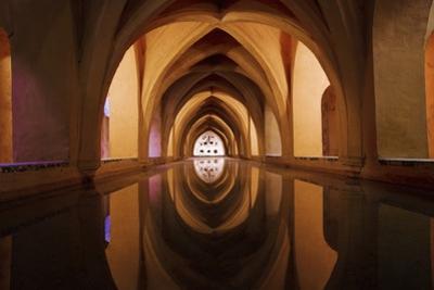 Bath of Dona Maria De Padilla at Alcazar by Design Pics Inc