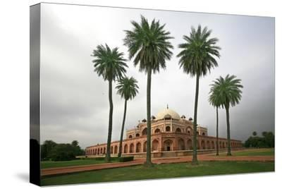 Building with Palm Trees in Foreground; New Delhi,India