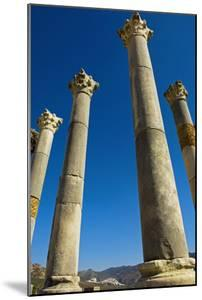 Column in Capitol in Ancient Roman City by Design Pics Inc