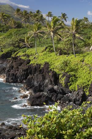 Hawaii, Maui, Hana, the Black Sand Beach of Waianapanapa by Design Pics Inc