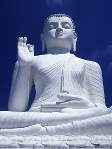 Large Seated White Buddha by Design Pics Inc