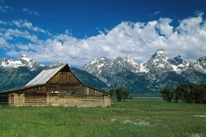 Moulton Barn at Mormon Row in Grand Tetons by Design Pics Inc
