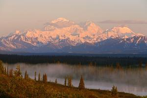 Mt. Mckinley Reflected in Small Lake at Sunrise in Broad Pass by Design Pics Inc