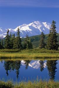 Mt Mckinley Reflecting in Nugget Pond Denali National Park Interior Alaska Summer by Design Pics Inc