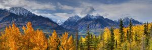 Panoramic View of the Fall Foliage and Snowcapped Chugach Mountains Along the Glenn Highway by Design Pics Inc