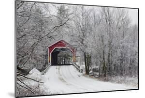 Red Covered Bridge in the Winter; Adamsville Quebec Canada by Design Pics Inc