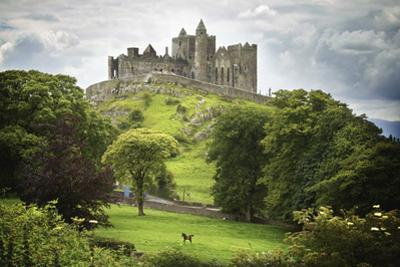 Rock of Cashel, County Tipperary, Ireland by Design Pics Inc