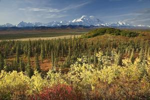 Scenic View of Mt. Mckinley and the Alaska Range with Taiga and Fall Colors by Design Pics Inc