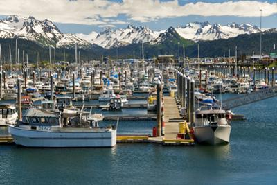Scenic View of the Homer Small Boat Harbor with the Kenai Mountains in the Background by Design Pics Inc