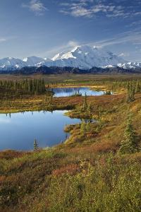 Scenic View of Tundra Ponds and Fall Colors with Mt. Mckinley in the Background by Design Pics Inc