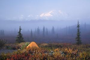 Scenic View of Wonder Lake Campground with a Tent by Design Pics Inc