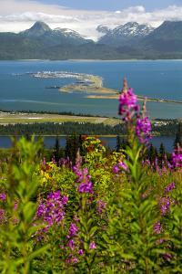 Scenic View Overlooking the Homer Spit by Design Pics Inc