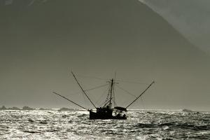 Silhouetted Salmon Troller Fishing Off Icy Point, Gulf of Alaska During Mid-Summer by Design Pics Inc
