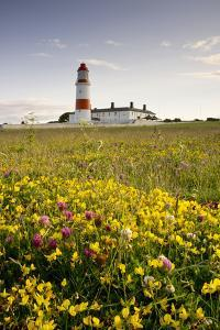 Souter Lighthouse; South Shields Marsden South Tyneside Tyne and Wear England by Design Pics Inc