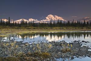 The Alaska Range and Denali's North Face are Reflected in Small Tundra Pond in Denali National Park by Design Pics Inc