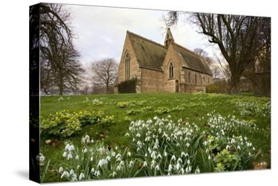 White Flowers with a Small Church in Background; Northumberland,England