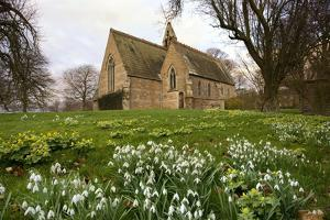 White Flowers with a Small Church in Background; Northumberland,England by Design Pics Inc