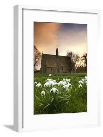 White Flowers with a Small Church in Background