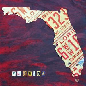 Florida License Plate by Design Turnpike